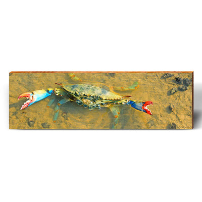 Tidal Pool Blue Crab Piece-Mill Wood Art