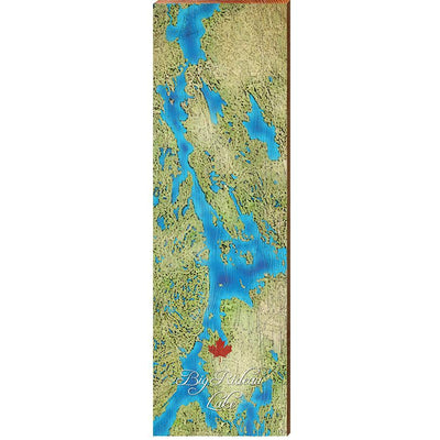 Big Rideau Lake, Canada Satellite Map Wall Art-Mill Wood Art