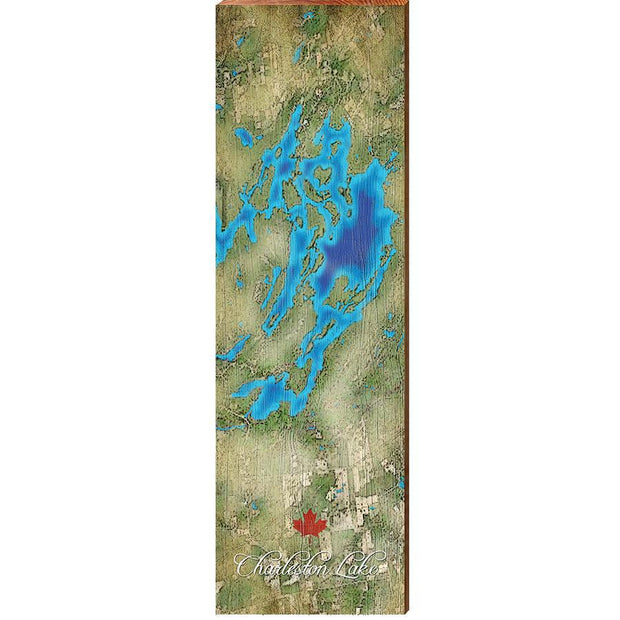Charleston Lake, Canada Satellite Map Wall Art-Mill Wood Art