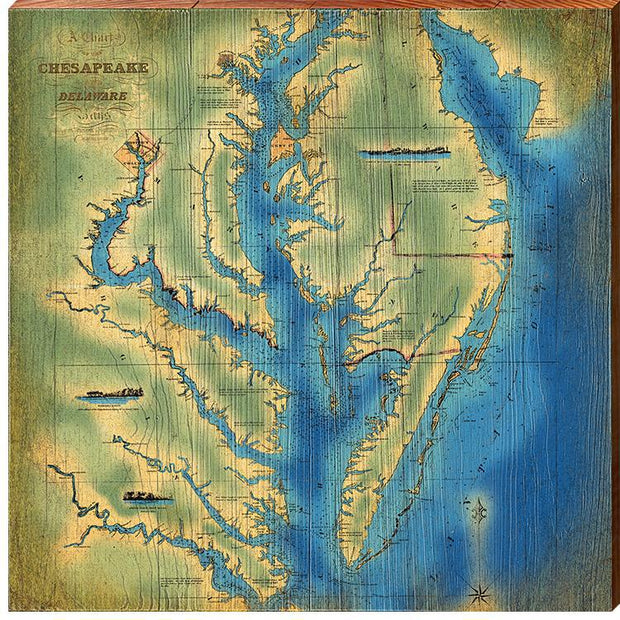 The Chesapeake Bay Topographical Map Square Wall Art-Mill Wood Art