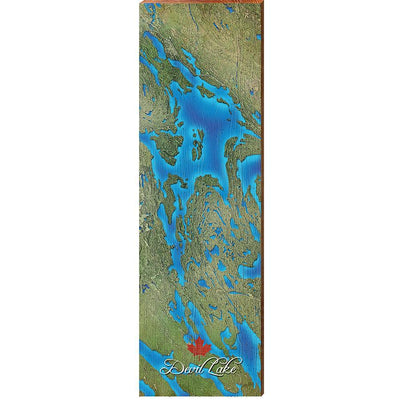 Devil Lake, Canada Satellite Map Wall Art-Mill Wood Art