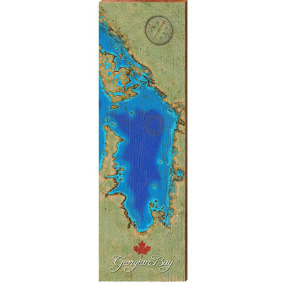 Georgian Bay, Canada Satellite Map Wall Art-Mill Wood Art