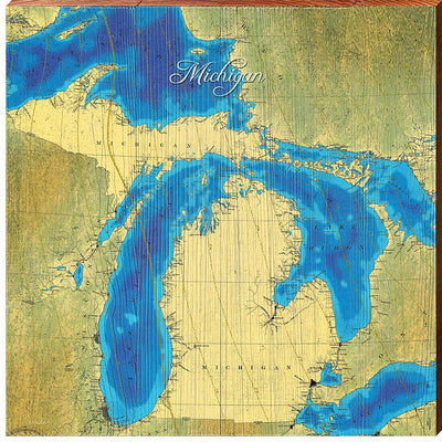 State Of Michigan Topographical Styled Map Square Wall Art-Mill Wood Art