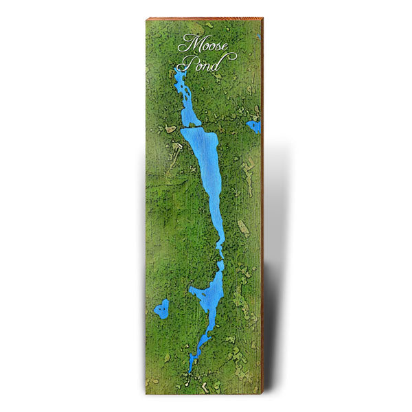Moose Pond, Maine Satellite Styled Map Wall Art-Mill Wood Art