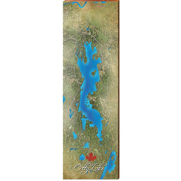 Otty Lake, Canada Satellite Map Wall Art-Mill Wood Art