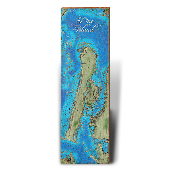 Pine Island, Florida Topographical Styled Map Wall Art 5.5\