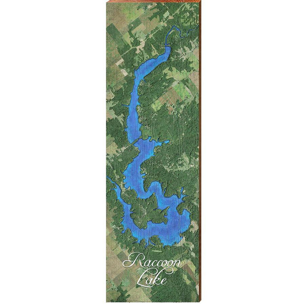 Raccoon Lake, Indiana Satellite Styled Map Wall Art-Mill Wood Art