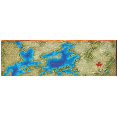 Sand Lake, Canada Satellite Map Wall Art-Mill Wood Art