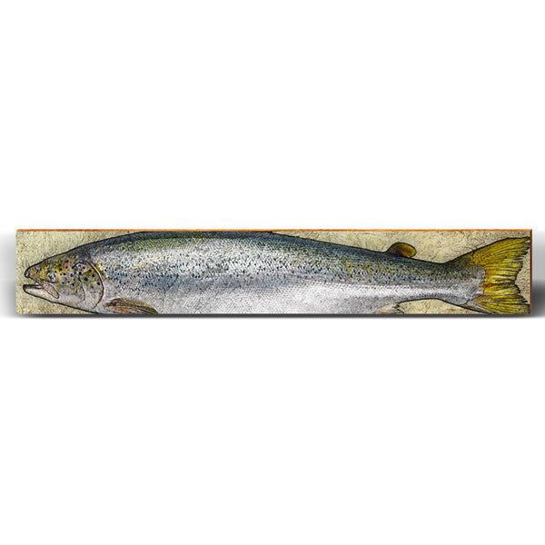"Coho Salmon Rustic Large Piece | Size: 9.5"" x 60""-Mill Wood Art"