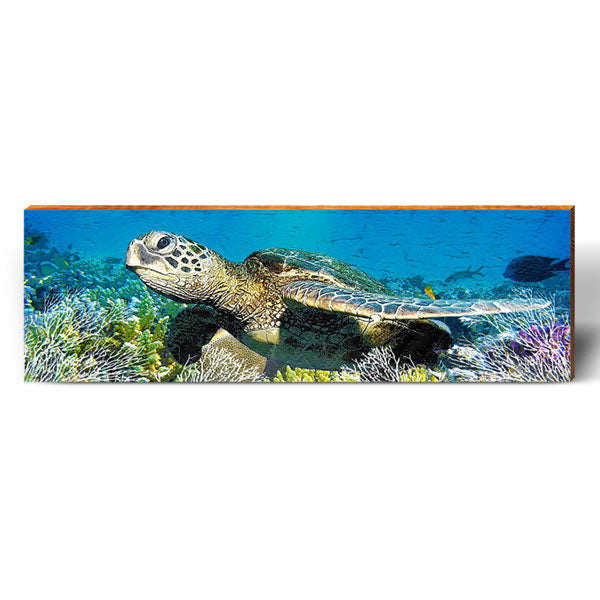 Sea Turtle Reef Life-Mill Wood Art