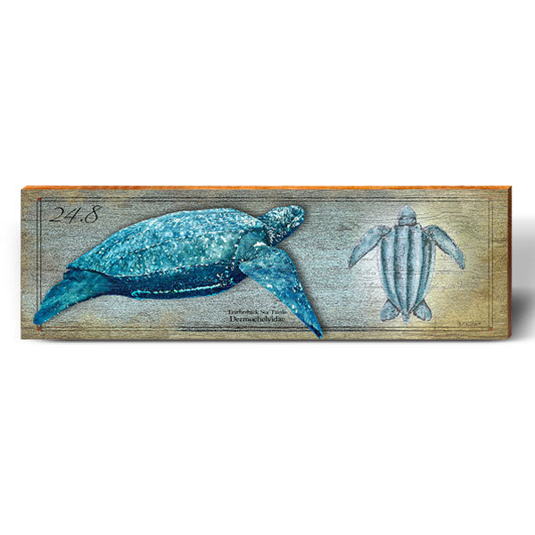 Leatherback Sea Turtle Study-Mill Wood Art
