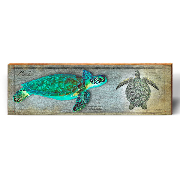 Green Sea Turtle Study-Mill Wood Art