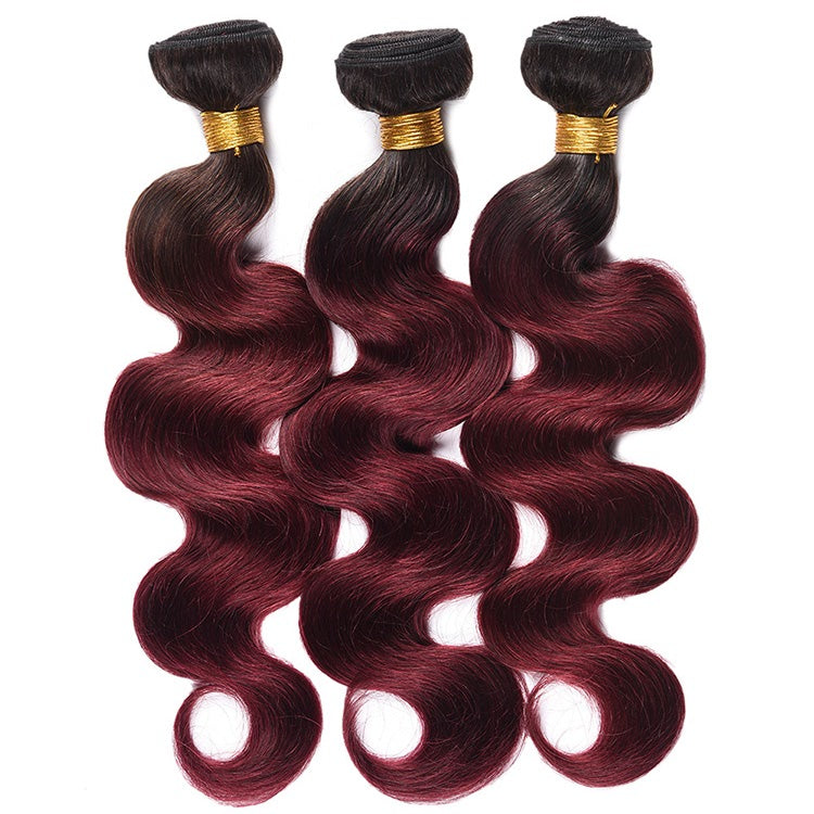 Allove Hair Ombre T1B 99J Body Wave Human Hair Bundles With Lace Closure : ALLOVEHAIR