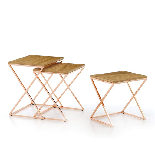 Atmacha - Home and Living Nest of Table Dotori Nest of Table - Parquet and Rose Gold