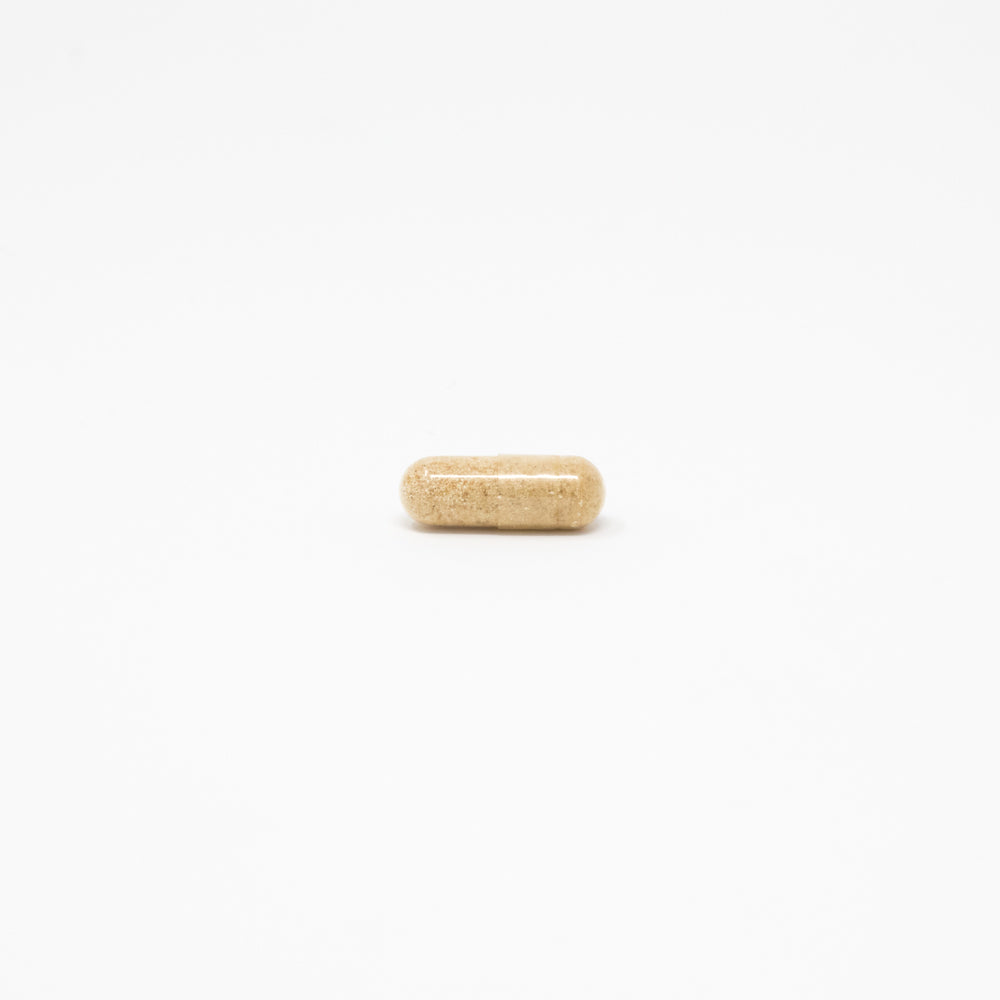 Probiotic pill gut support