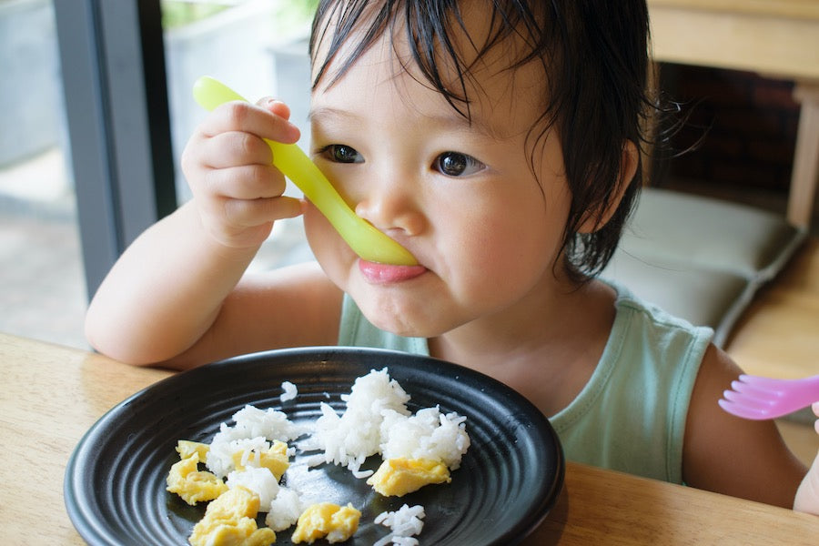 A Registered Dietitian's Guide to Baby-Led Weaning | 1 CPEU