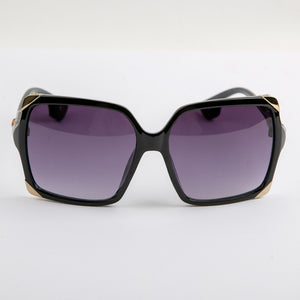 Sleety Black Sunglasses With Protective Case