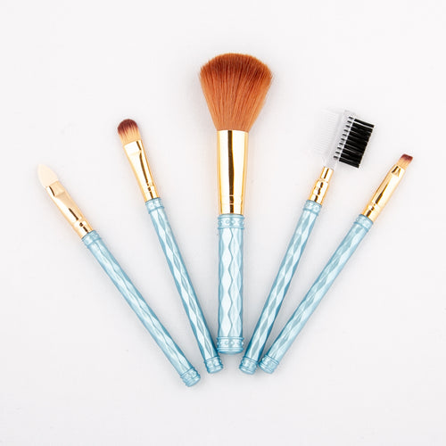 Exquisite Set of 5 Brushes