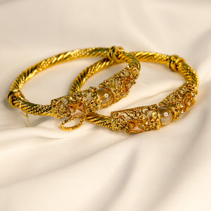 Polished To Perfection Pair Of Bangles (Code 0140)