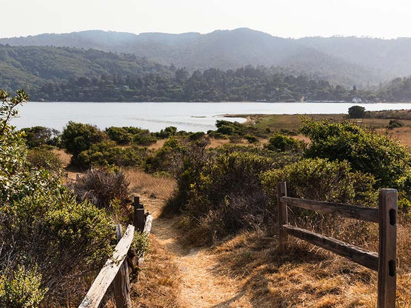 tomales-bay-hiking-outdoors-best-northern-california-trails-marin-county-travel-agent-apparel-2