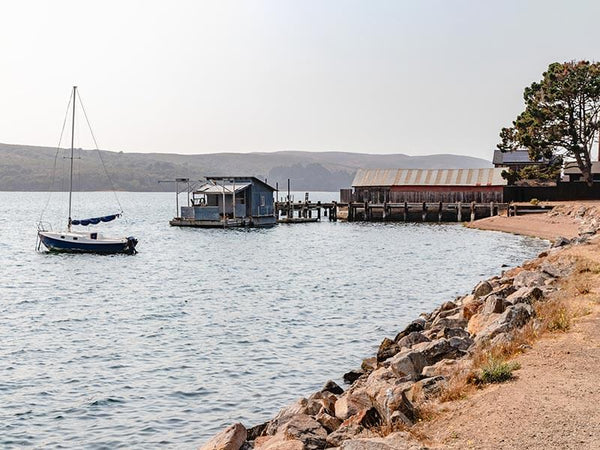 tomales-bay-oysters-marshall-store-best-northern-california-trails-marin-county-travel-agent-apparel