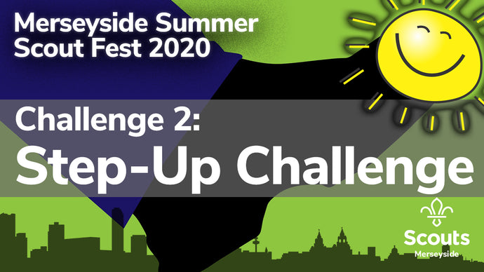 Summer Scout Fest 2020: Challenge 2! Step-Up