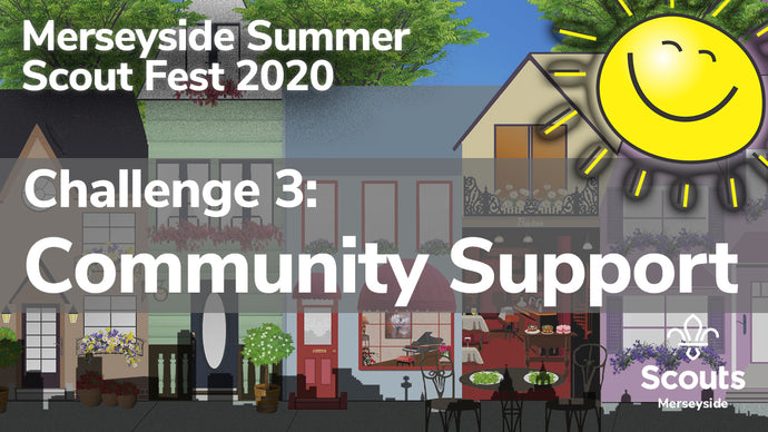 Summer Scout Fest 2020: Challenge 3! Community Support