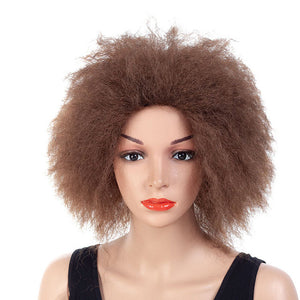 Short-Big-Afro-Curly-Hair-Black-Brown-Synthetic-Hair-Wig