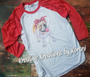 English bulldog Raglan