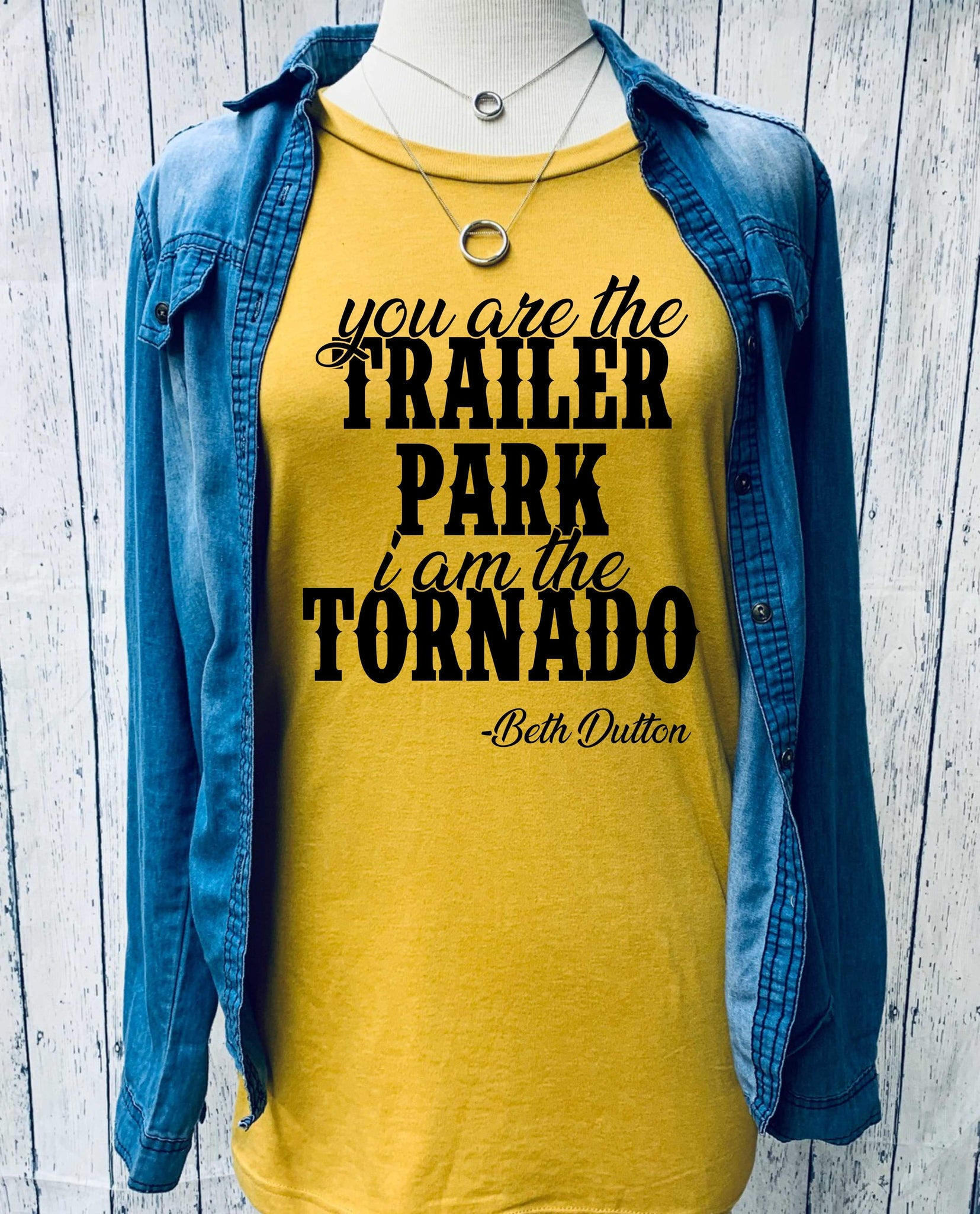 you are the trailer park I am the tornado