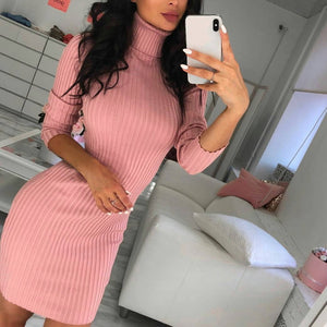 Nesa Fashion Women Autumn Winter Casual Sweaters Long Sleeve Turtleneck Knitted Stretchable Elasticity Sweater Female Slim Bodycon Dress