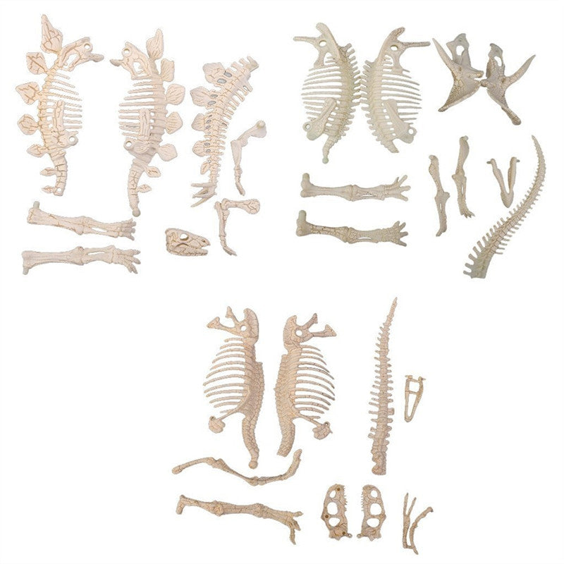 3Pcs 4D Fossil Skeleton Figure Loose Parts Assorted Dinosaur Fossil Skeleton Toys DIY For Kids Boys Girls
