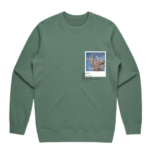 Hands All Over 02   Men's 100% Cotton Gallery Sweatshirt in Sage / XXL by Serap Osman