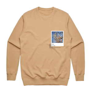 Hands All Over 02   Men's 100% Cotton Gallery Sweatshirt in Tan / XXL by Serap Osman