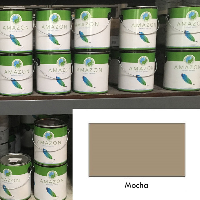 1-Gallon Amazon Select Paint: Mocha