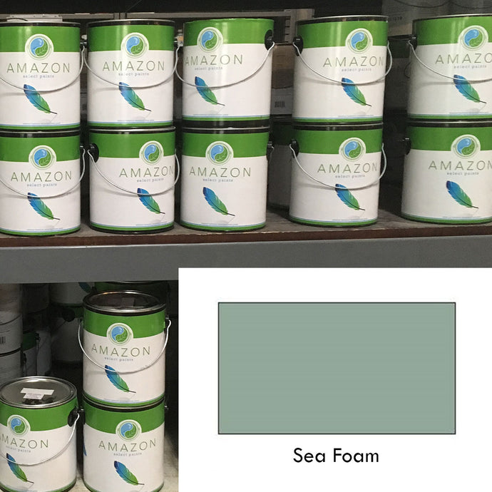 1-Gallon Amazon Select Paint: Sea Foam