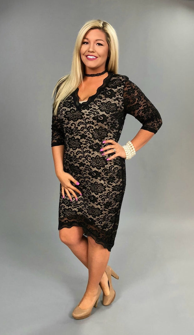 SD-L Stretchy Spandex Black Lace Overlay Nude Lining