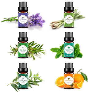 Vena Beauty 100% Pure Aromatherapy Essential Oil Set of 6, Therapeutic Grade