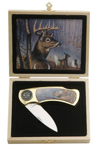 WHITE TAIL DEER BUCK GIFT BOX KNIFE 4""