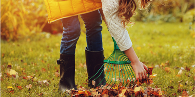 Tips for Fall Cleaning