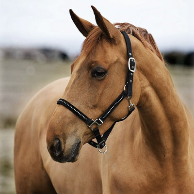 Halter Horze Diamond