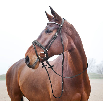Horze Rohan Snaffle Bridle with Diamonte Browband and Patent Noseband