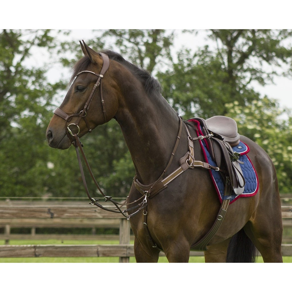 Qhp Sedna 5 Point Breastplate High Quality At Affordable Price