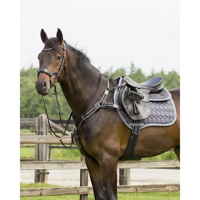 QHP Sedna 5 Point Breastplate