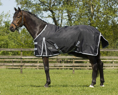 QHP turnout Rug 600Denier 200g Fill