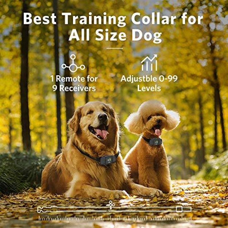 Dog Training Collar With Remote - dilutee.com