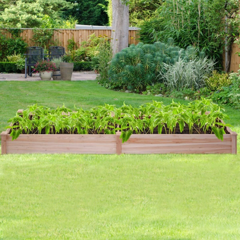 Raised Garden Vegetable Bed - dilutee.com