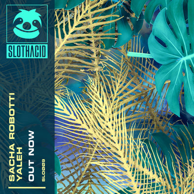 OUT NOW! YALEH - SACHA ROBOTTI