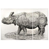 "Indian Rhino Print 27""x37"" Eleish Van Breems Home"