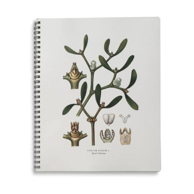 Mistletoe Notebook